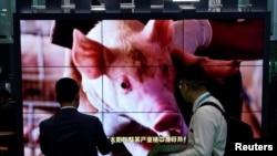 Quảng cáo thịt heo đông lạnh tại triển lãm hàng nhập khẩu quốc tế ở Thượng Hải, Trung Quốc.