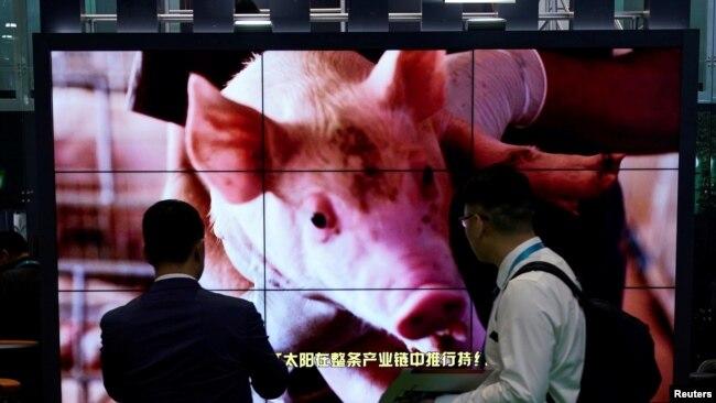 美中贸易协议谈判倒计时 中国豁免大豆和猪肉关税