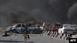一条狗跑过汽车炸弹袭击的爆炸现场。(2017年5月31日)
