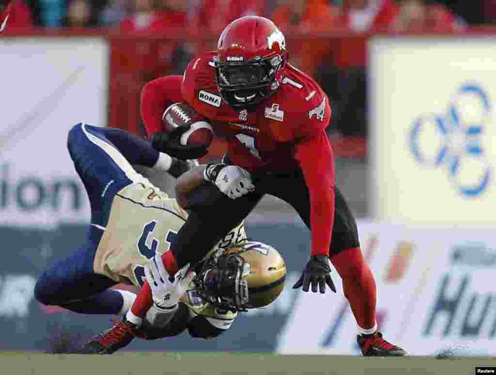 캐나다 캘거리에서 열린 CFL 미식축구 경기에서 볼을 다투는 양팀 선수들