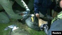 jami'an tsaro suna bincike Dzhokhar Tsarnaev bayan sun kama shi