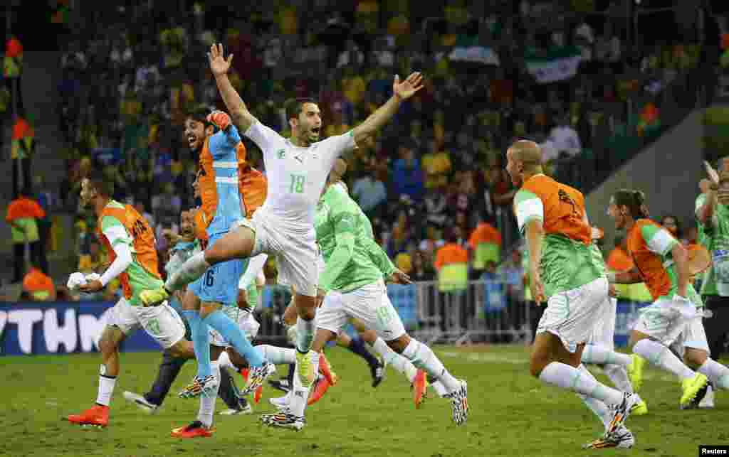 Algeria's Abdelmoumene Djabou celebrates with his teammates after tying Russia at the Baixada arena in Curitiba, June 26, 2014.