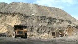 Војна против јагленот
