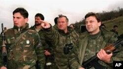 Реакции од САД на апсењето на Ратко Младиќ