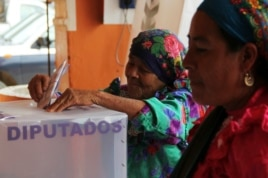 A woman casts her vote in a ballot box for delegates at a polling station in San Bartolome Quialana, on the outskirts of Oaxaca, Mexico, July 7, 2013.