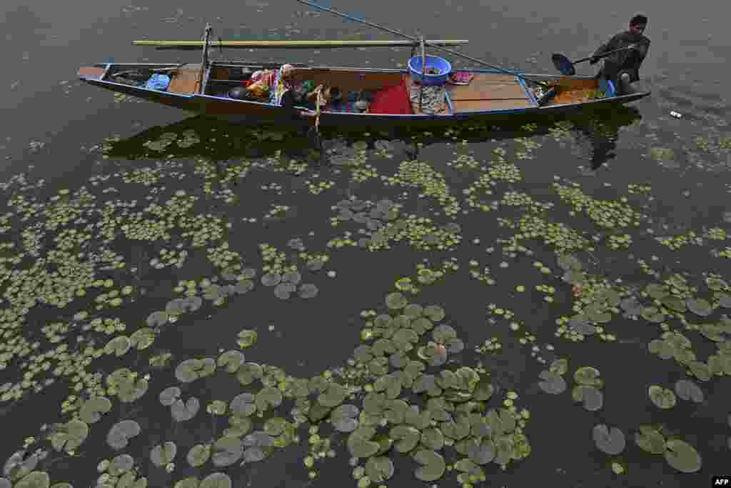 A fisherman rows a boat at Dal lake, on the outskirts of Srinagar, India.