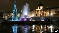 座落於英國倫敦特拉法加廣場的聖誕樹。