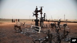 A picture taken on March 3, 2012 shows environmental damage caused by bombs which hit El Nar oil field in Unity State, South Sudan on February 29.