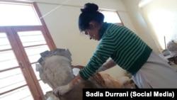 Sadia Durrani