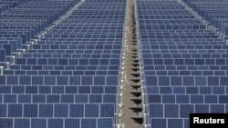 中國太陽能板