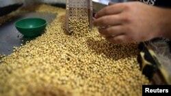 中國簡化北部邊境檢查站大豆進口手續