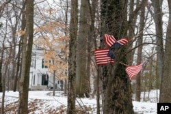 FILE - Small American flags have been placed in the trees in front of the Warmbier family home in Wyoming, Ohio, Jan. 22, 2016.