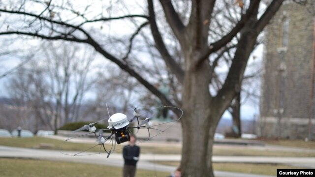 An autonomous flying robot avoids a tree on the Cornell Arts Quad (credit: Saxena lab)