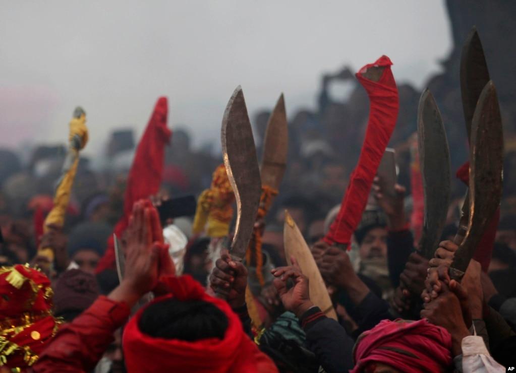 Hindu devotees raise sharp objects as they gather to sacrifice buffalos during Gadhimai festival in Bariyarpur, south of Kathmandu, Nepal.