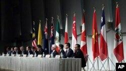 资料照:跨太平洋11国经贸领导人在东京就《全面与进步跨太平洋伙伴关系协定》(CPTPP)举行会谈后召开记者会。(2019年1月19日)