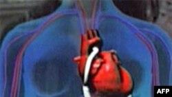 Nov aparat za srce mogao bi da spase milione života