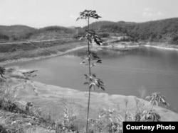 当年莉莉上山下乡所在云南西双版纳景洪农场水利兵团修筑水坝的地方(莉莉提供图片)