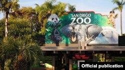 San Diego Zooparkı