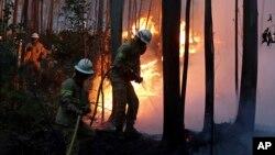 포르투갈 중부 산간 지방에서 대형 산불이 발생한 가운데 18일 소방관들이 진화 작업을 하고 있다.