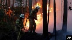 Les sapeurs-pompiers traversent la forêt en feu près du village de Avelar, au centre du Portugal, le 18 juin 2017.