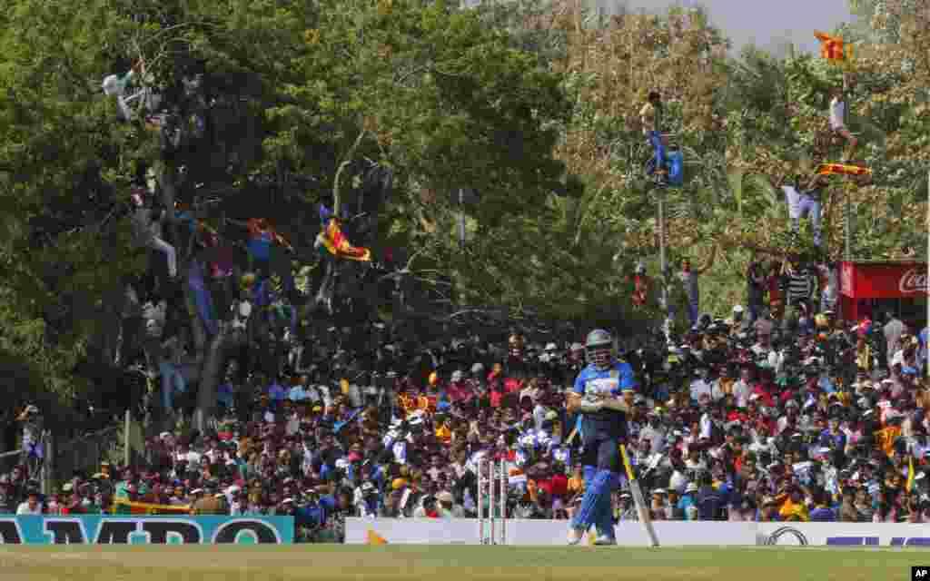អ្នកគាំទ្ររបស់ស្រីលង្កាមើលកីឡាករ Tillakaratne Dilshan (រូបមុខ) ក្នុងថ្ងៃទី៣នៃការប្រកួតកីឡា Cricket អន្តរជាតិរវាងអូស្រា្តលី និងស្រីលង្កា នៅក្នុងក្រុង Dambulla ប្រទេសស្រីលង្កា។