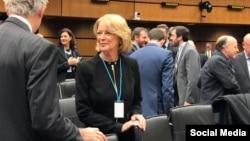 جکی ولکات، نماینده آمریکا در آژانس بینالمللی انرژی اتمی