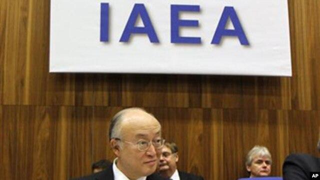 Director General of the International Atomic Energy Agency Yukiya Amano (file photo)