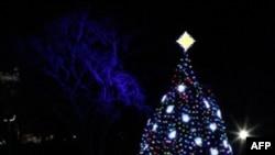 Pema e Krishtlindjeve nxit debatin e përvitshëm për emërtimin e saj