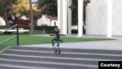 LEO (LEONARDO/LEgs ONboARD drOne), robot berkaki dua yang mampu berjalan dan melayang. (Courtesy: Caltech)