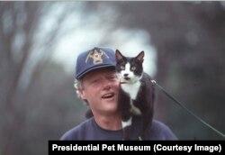 Президент Билл Клинтон на прогулке с котом Соксом
