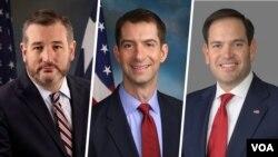 از راست سناتورها روبیو، کاتن و کروز