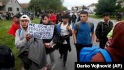 Para migran berjalan ke arah perbatasan Hungaria dari wilayah Serbia (foto: ilustrasi).