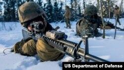 美国海军陆战队在阿拉斯加州集训(美国海军陆战队2020年2月6日照片)