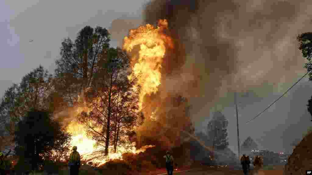 Bombeiros usam uma mangueira para combater o incêndio ao longe da Valley Road Morgan, California, 31 de Julho 2015.