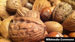 A new study suggests that a handful of nuts a day can stave off various diseases.