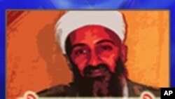 Bin Laden, the Arab Spring, and China's sense of insecurity