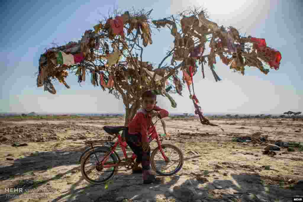 چادرنشینان در نزدیکی بندر خمیر هرمزگان عکس: فرهاد صفری