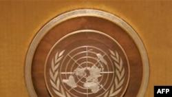 BM Pakistan'daki Sel Mağdurlarına Tohum Verdi