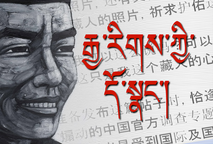 Chinese Scholars and the Self-Immolations in Tibet