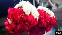 گلاب اور گل داودی