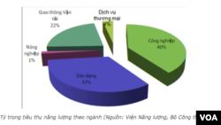 Tỷ trọng tiêu thụ năng lượng 2010 (Viện Năng lượng, Bộ Công thương)