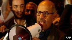 埃及著名的民主斗士巴拉迪在开罗的解放广场向群众发表讲话(资料照片)