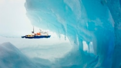 Why is the Antarctic Cooling?