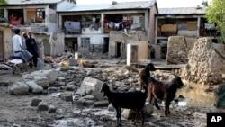 2013年8月4日阿富汗人站在洪水击后的喀布尔