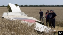 Une partie de l'avion de Malaysie Ailines, vol 17, qui s'est écrasé près du viallge de Hrabove, Donetsk region, dans l'Est de l'Ukraine.