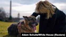 Перша леді Джил Байден та Чемп на галявині Білого дому, 24 січня 2021 року