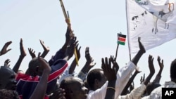 Abyei residents wave South Sudanese flags after voting overwhelmingly in a referendum held in Oct. 2013 to join South Sudan.