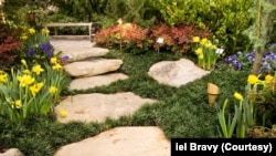 Garden Path with stones and blooming flowers