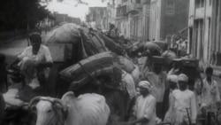 14 اگست 1947: ہم نے ہجرت کیسے کی؟