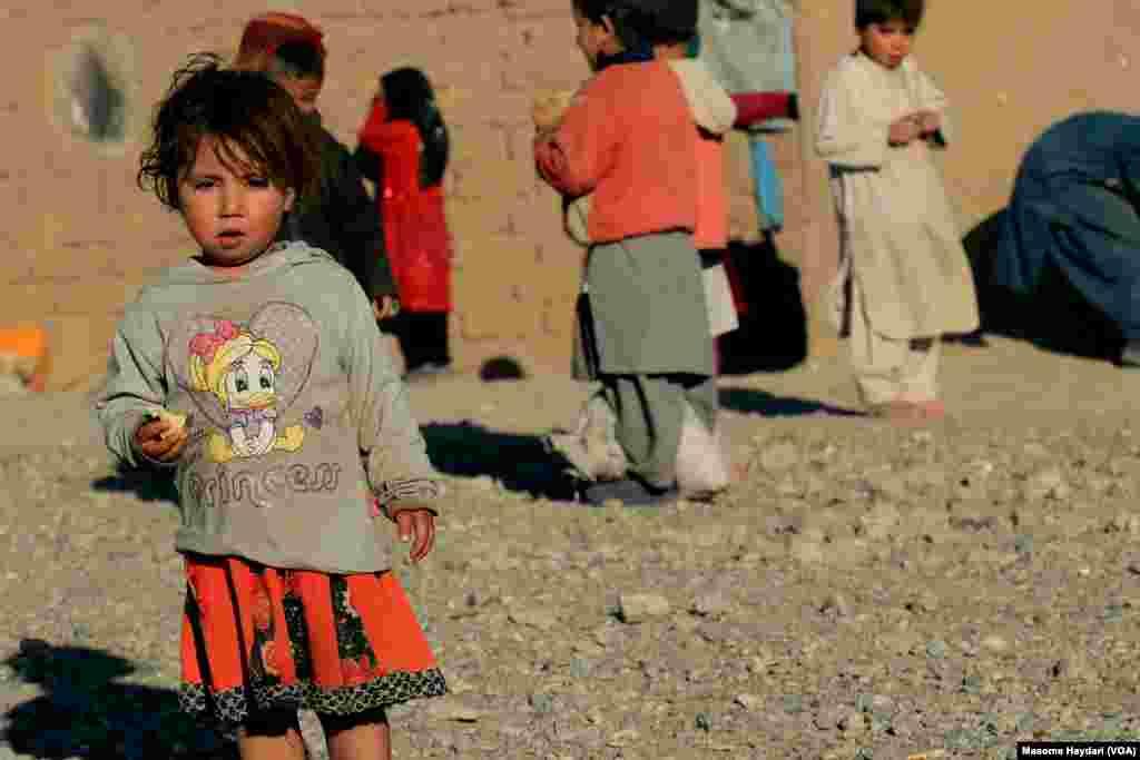 مسوولان شماری از نهادهای بین المللی در افغانستان هشدار می دهند که خشکسالی در غرب افغانستان به یک بحران مبدل شده و فاجعه آفرین خواهد بود